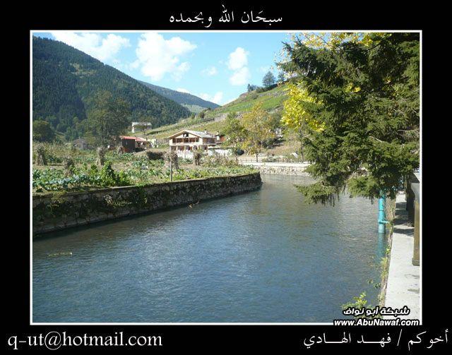 الهادي رحلتي الرياض البحر الأسود 9eC99713.jpg