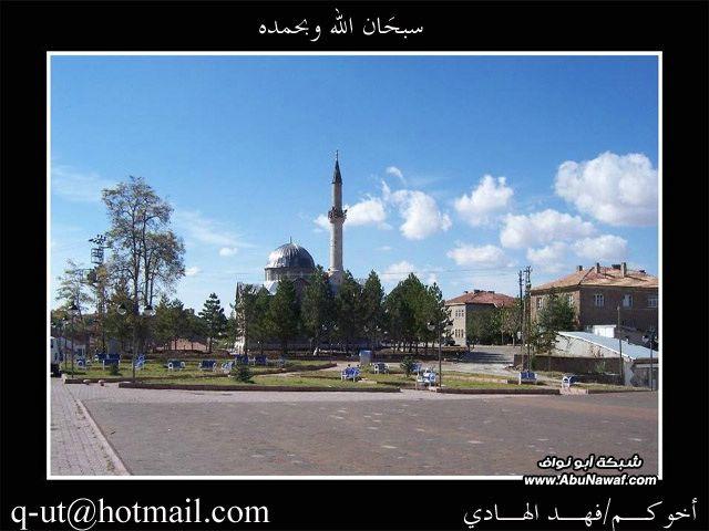 الهادي رحلتي الرياض البحر الأسود EYL96871.jpg