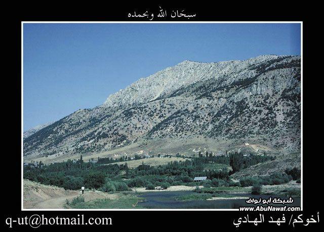 الهادي رحلتي الرياض البحر الأسود NS796871.jpg