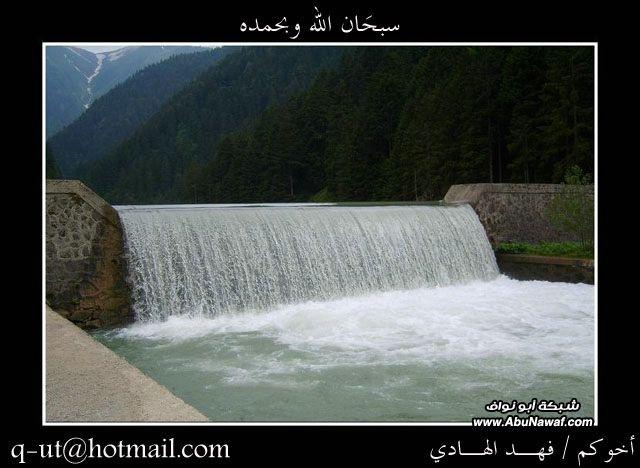 الهادي رحلتي الرياض البحر الأسود Wsx99316.jpg