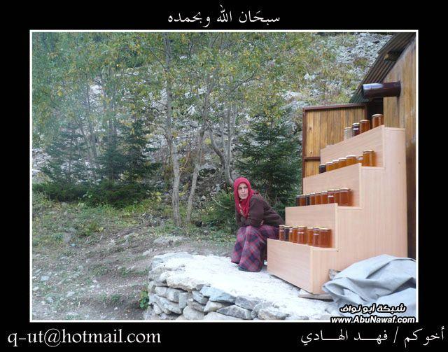 الهادي رحلتي الرياض البحر الأسود ijN06277.jpg