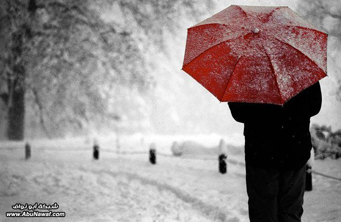 2011 Red_umbrella.jpg