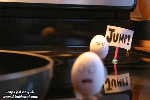 egg19
