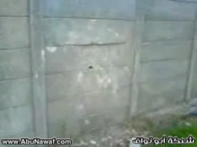 http://g.abunawaf.com/2009/misc/v154.jpg