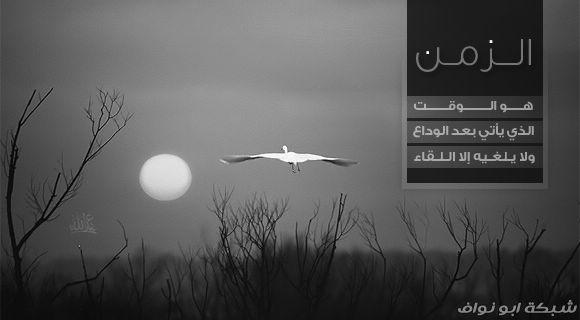 ������ �������� ���� 2012- ������ lastdream_s13.jpg