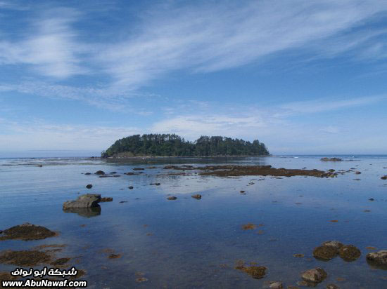 المحيطات حقائق وأرقام  2_1215894420_pacific-ocean-near-ozette-area