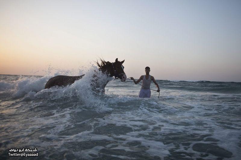 على البحر الأبيض المتوسط 6 نوفمبر 2012
