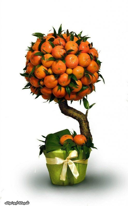 Топиарий с мандаринами мастер класс