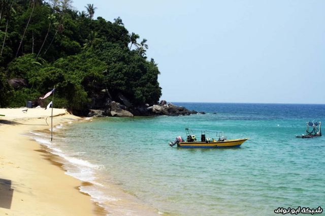 من كل بستان زهرة ( صور سياحية) Amazing_beaches_with_incredibly_clear_water_640_33