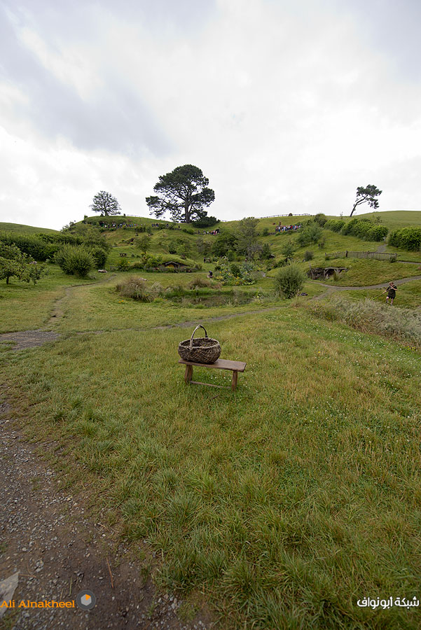 Hobbiton Movie Set and The Farm 7