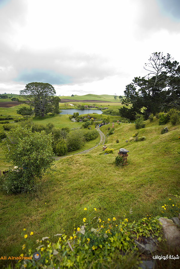 Hobbiton Movie Set and The Farm 12