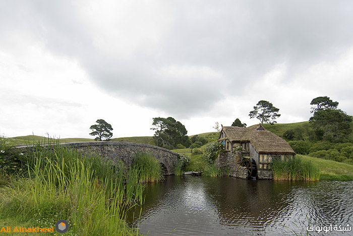 Hobbiton Movie Set and The Farm 22