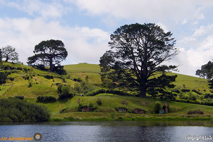 Hobbiton Movie Set and The Farm 26