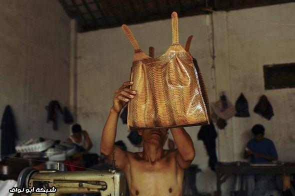 حقائب من جلد الثعابين