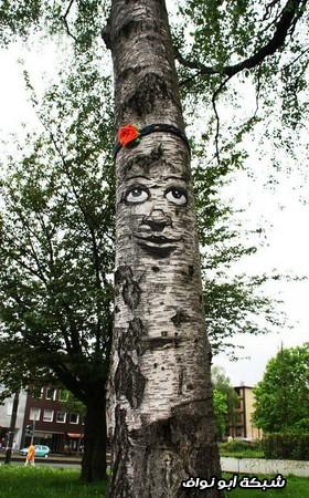 رسم على الجذوع الأشجار