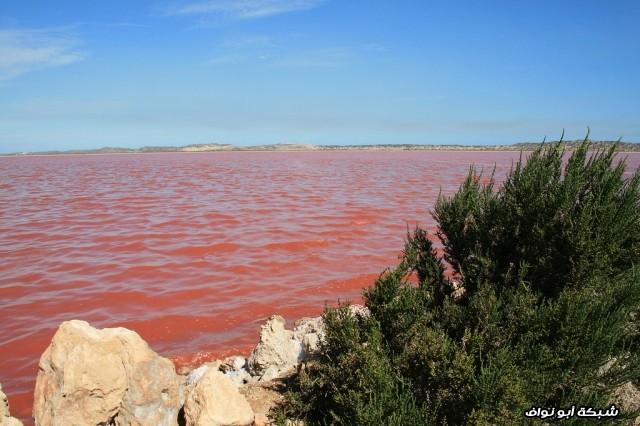 بحيرة في أستراليا