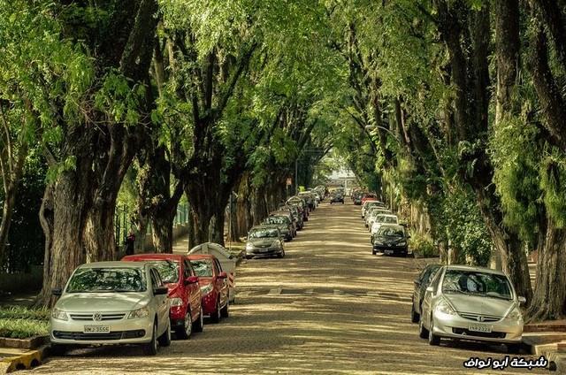 شارع جميل