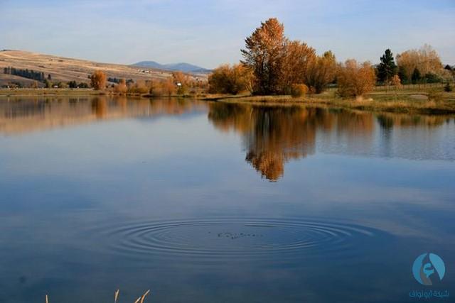بحيرة فرنستاون - مونتانا
