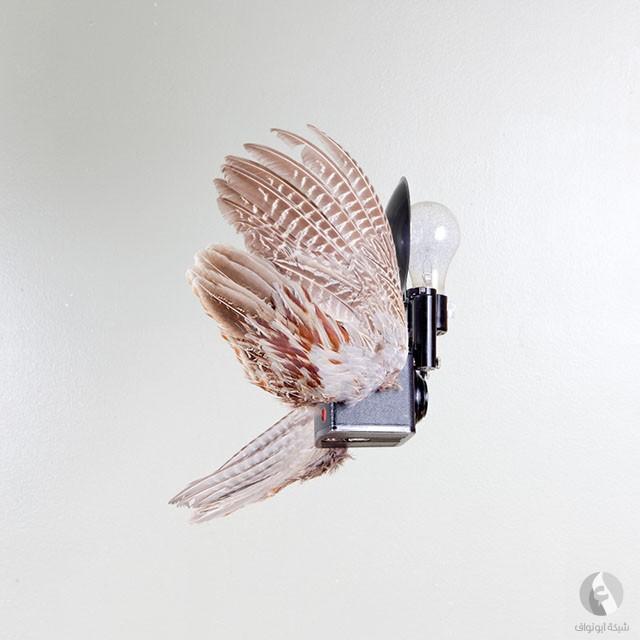 كاميرا تطير