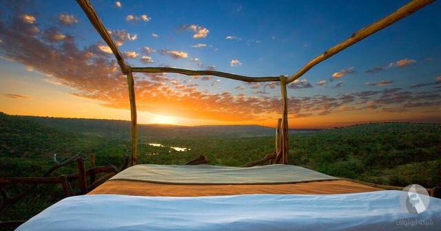 فندق في كينيا otel-v-kenii-1.jpg